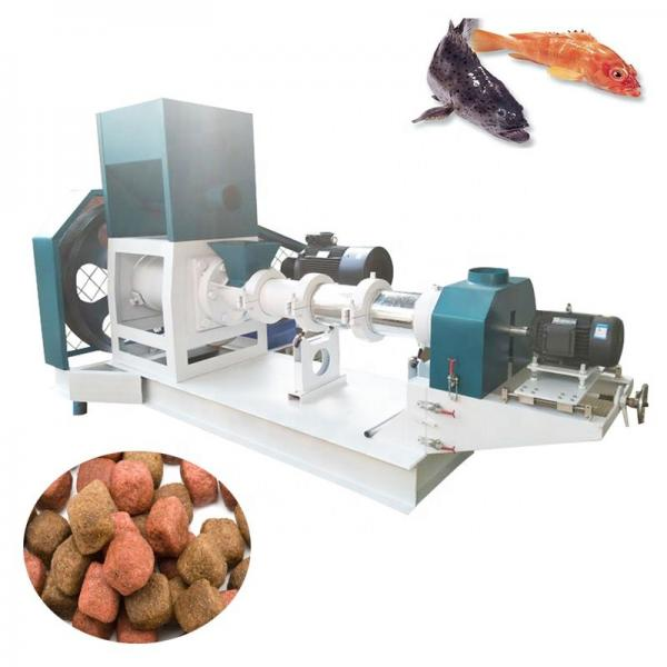 Automatic Dry Floating Sinking Animal Pet Fish  Feed Food Pellet Processing Making Machine #1 image